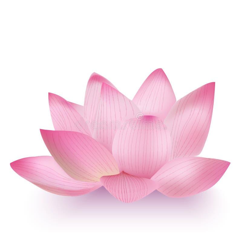 Lotus Flower Foto-realistica illustrazione vettoriale
