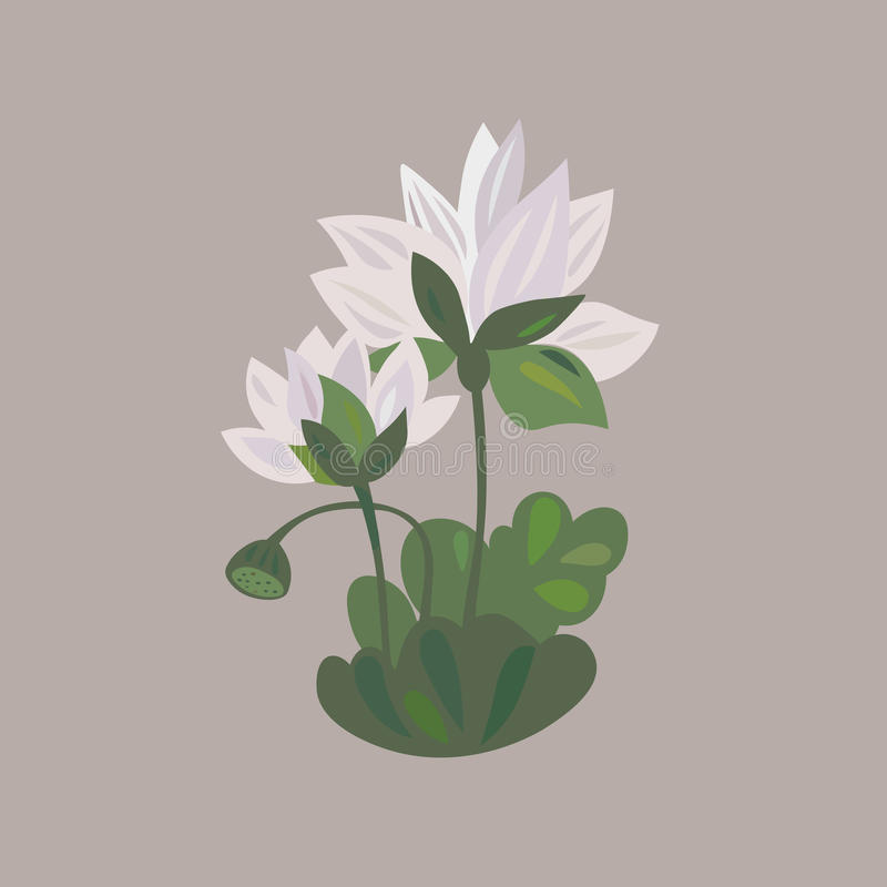 Lotus flower icon water lily flower royalty free illustration