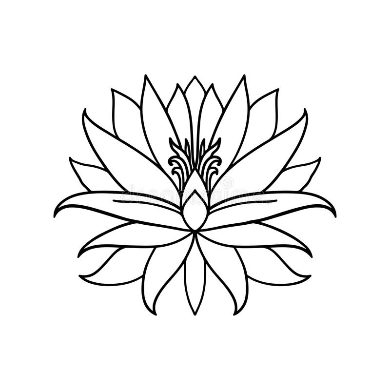 Lotus flower icon on white background yoga symbol vector download lotus flower icon on white background yoga symbol vector illustration stock vector mightylinksfo