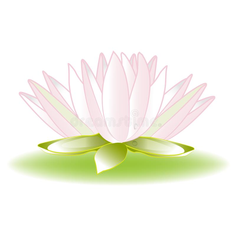 Lotus Flower Logo Image Icon Template Stock Illustration ...