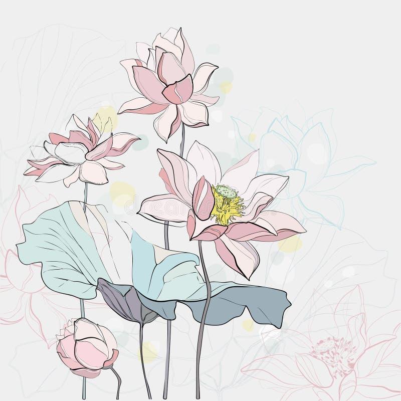 Lotus Flowers illustrazione di stock