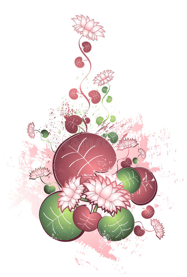 Lotus flowers,leafs,vector stock photo