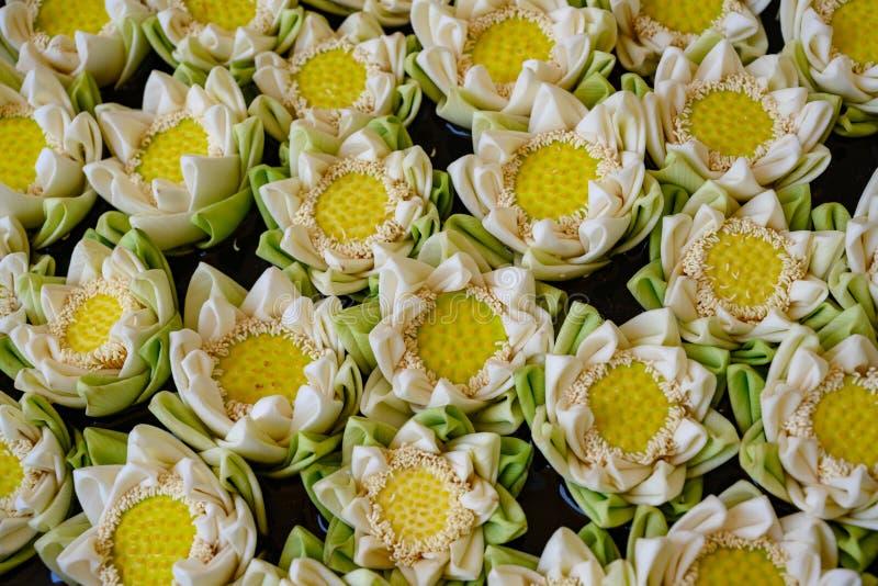 Lotus Flowers Viele gefaltete wei?e bl?hende Lotosblumen, die auf Wasser schwimmen stockfoto
