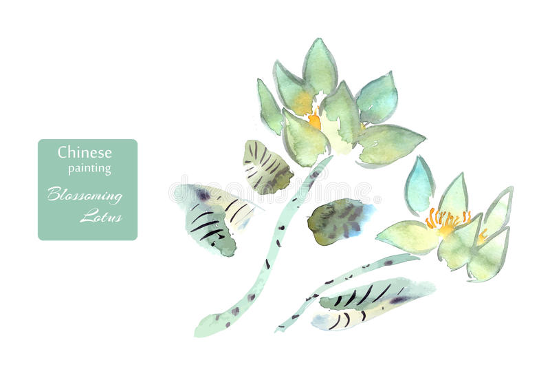Lotus flowers watercolor done in the style of Chinese painting stock illustration