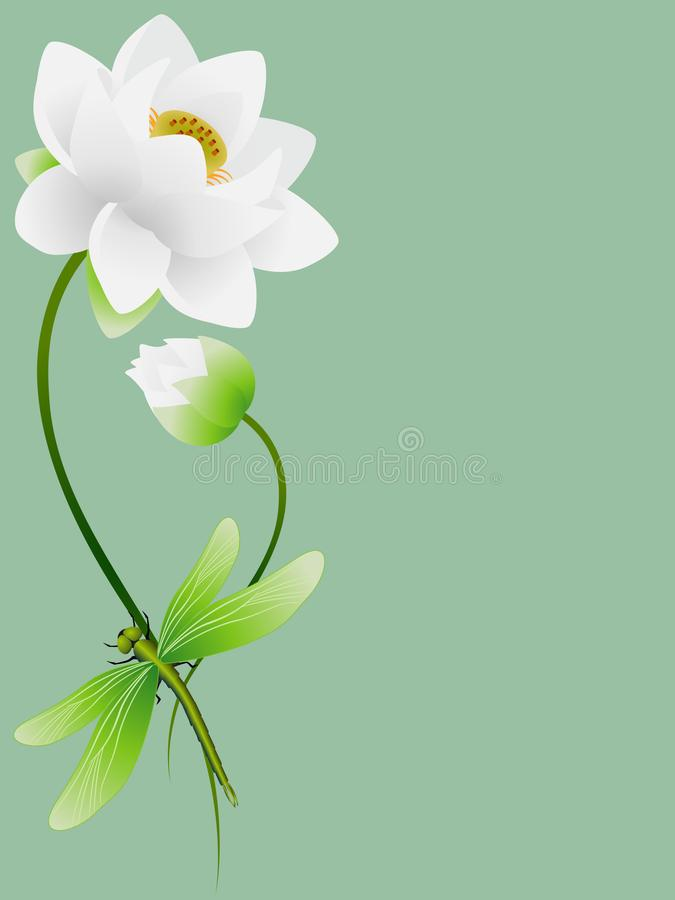 Free Lotus Flowers With Dragonfly On A Green Background. Stock Photography - 159560002