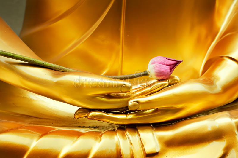 Lotus in hand of buddha. Lotus in hand image of buddha