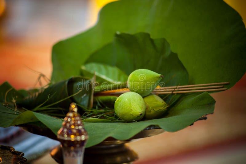Lotus i kadzidło dla cześć zdjęcie royalty free
