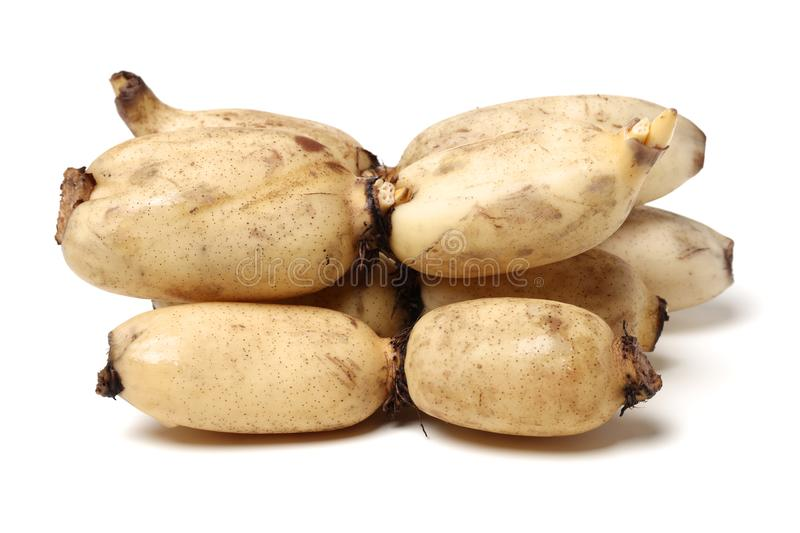 Lotus is a kind of Chinese traditional food, high nutritional value.It Can be eaten raw or cooking,and Chinese medicine believes m. Edicinal value of Lotus root stock photos