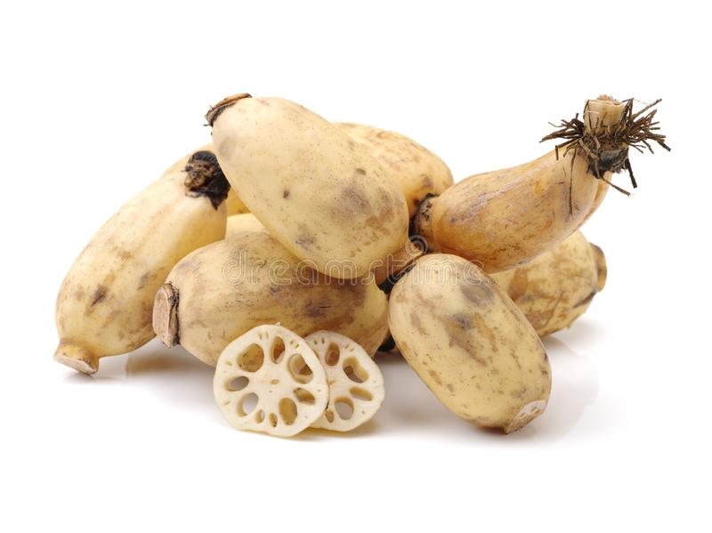 Lotus is a kind of Chinese traditional food, high nutritional value.It Can be eaten raw or cooking,and Chinese medicine believes m. Edicinal value of Lotus root royalty free stock image