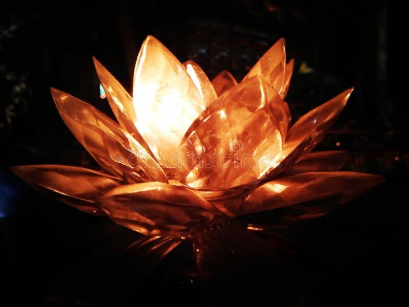Lotus Lamp imagens de stock