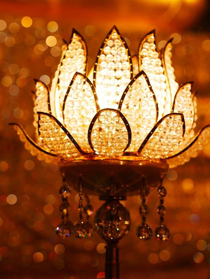 Lotus Lamp imagem de stock royalty free