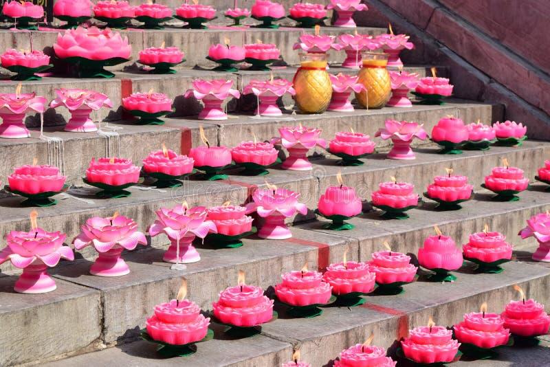 Lotus lights royalty free stock image