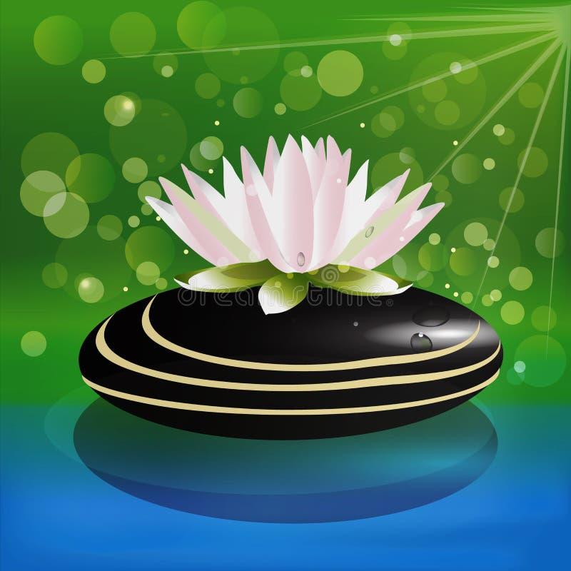 Lotus menchie kwitną na czarnym zdroju kamienia logu ilustracja wektor