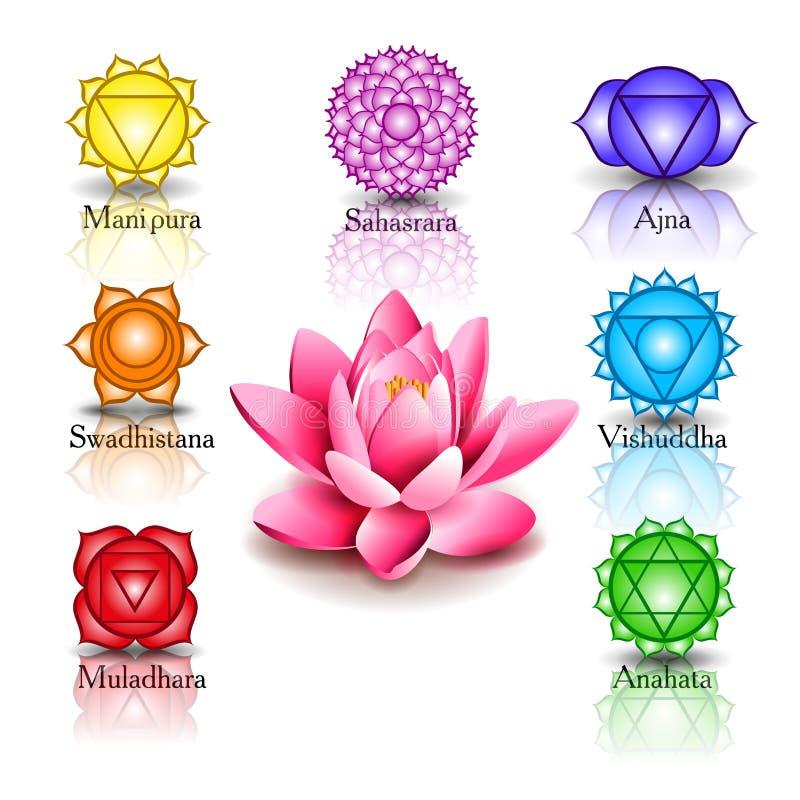 Lotus och sju chakras vektor illustrationer