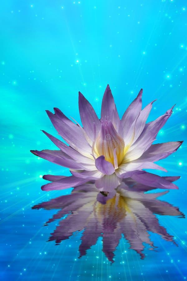 Lotus op Water vector illustratie