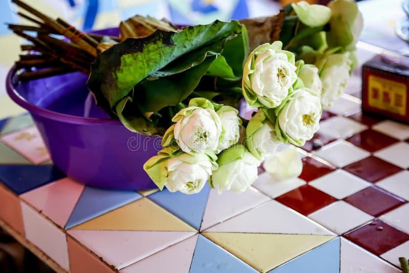 Download Lotus Per Sta Bene Al Monaco Fotografia Stock - Immagine di acqua, diventato: 56882356