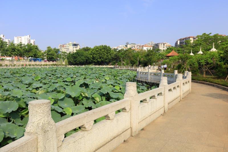 Lotus pond of nanputuosi temple, adobe rgb. The lotus pond of famous nanputuo temple in amoy city, china royalty free stock image