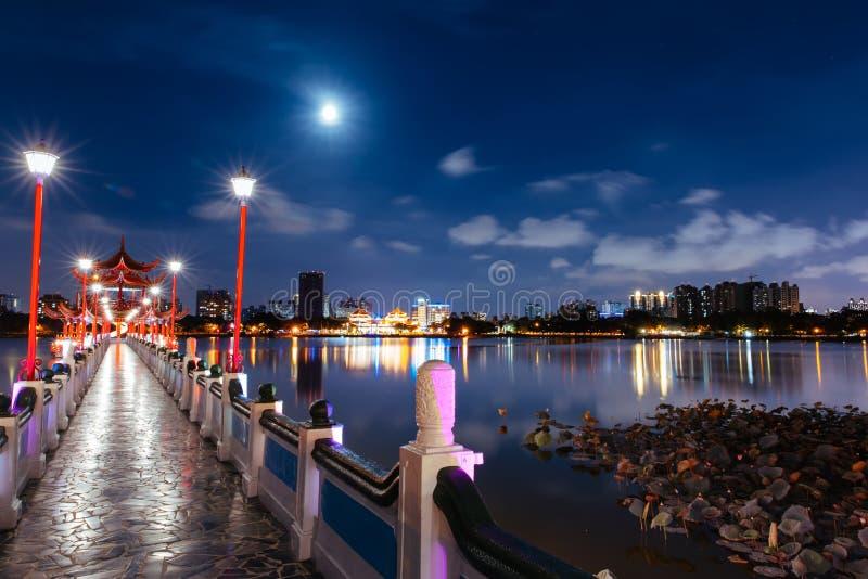 Lotus Pond Night stock foto's