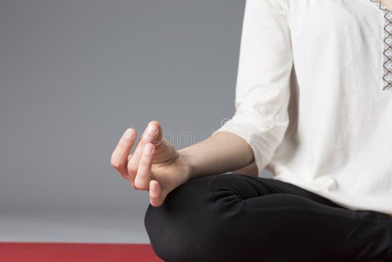 Lotus poserar, stänger sig upp av handen fotografering för bildbyråer