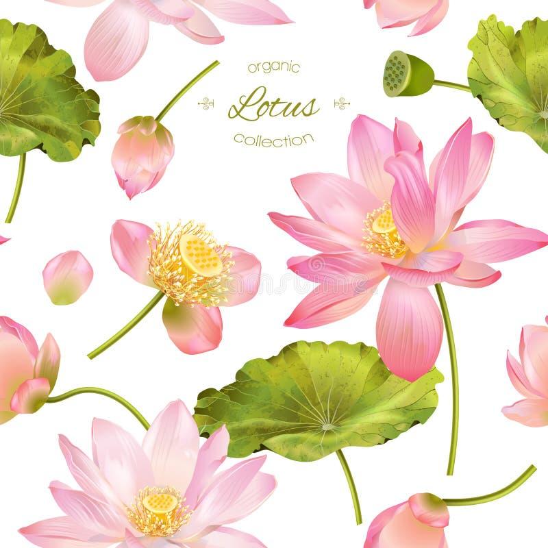 Lotus realistisk illustration stock illustrationer