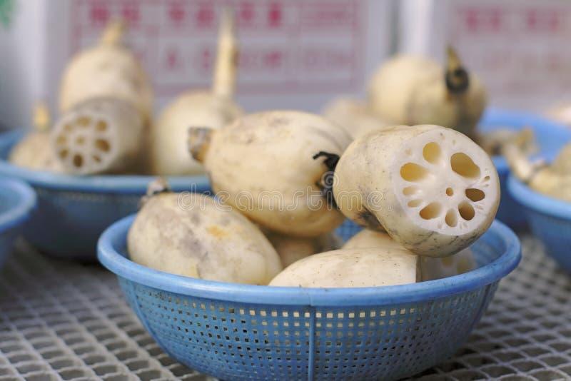 Lotus roots royalty free stock photo