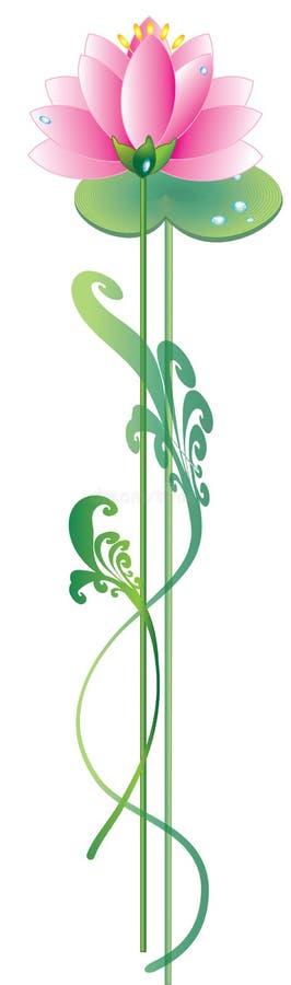 Lotus rose illustration libre de droits