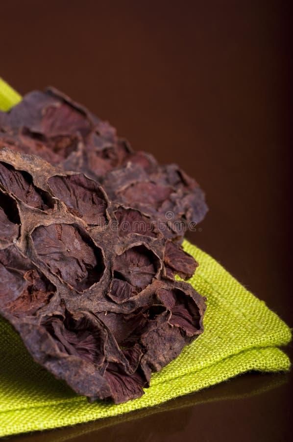 Lotus Seed Pot é nomeada igualmente Lian Fang foto de stock