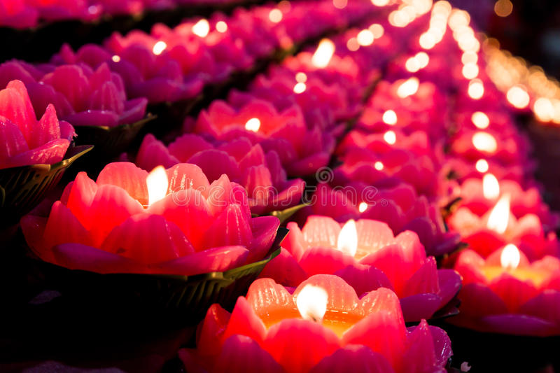 Lotus stearinljusljus exponerar mörkt omge royaltyfria bilder
