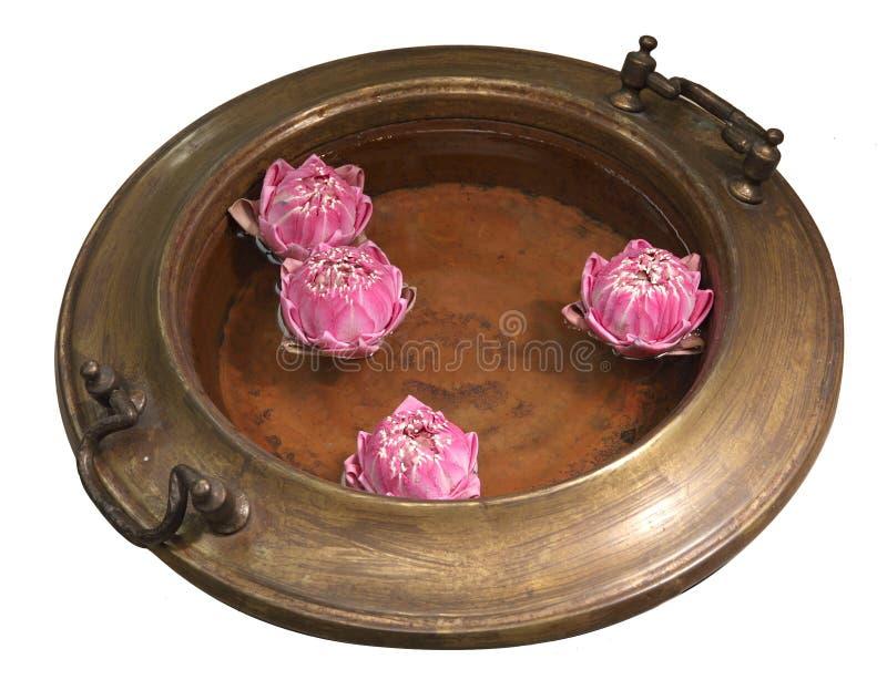 Lotus sur l'eau dans le pot en laiton antique photos stock