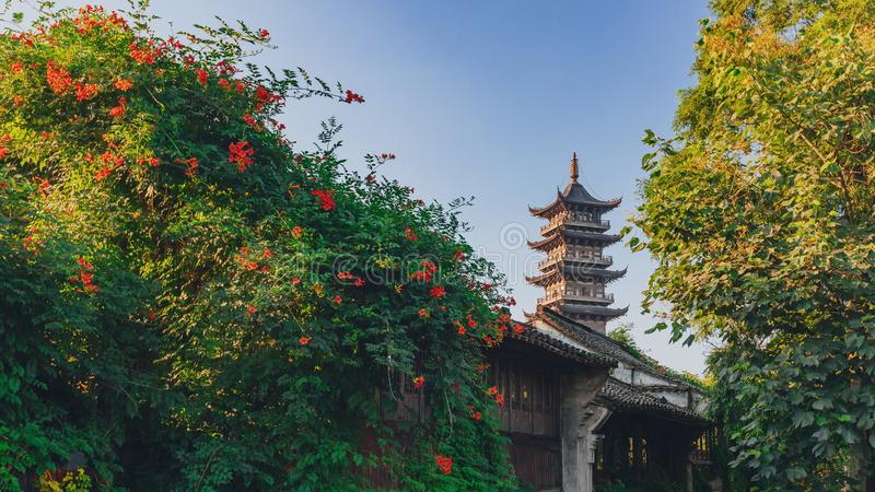 Lotus Tower between trees under blue sky in the old town of Wuzhen, China. View of Lotus Tower between trees under blue sky in the old town of Wuzhen, China royalty free stock photos