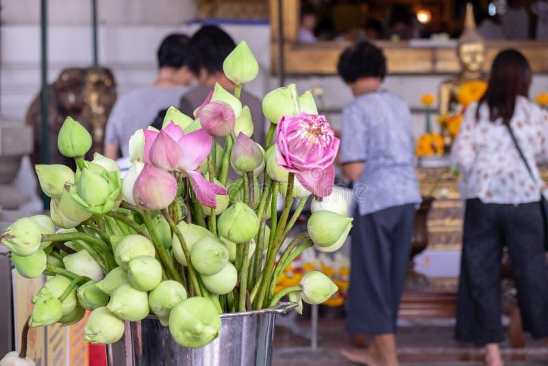 Lotus wordt geplaatst om voor mensen worden gebruikt die Boedha komen aanbidden royalty-vrije stock afbeeldingen
