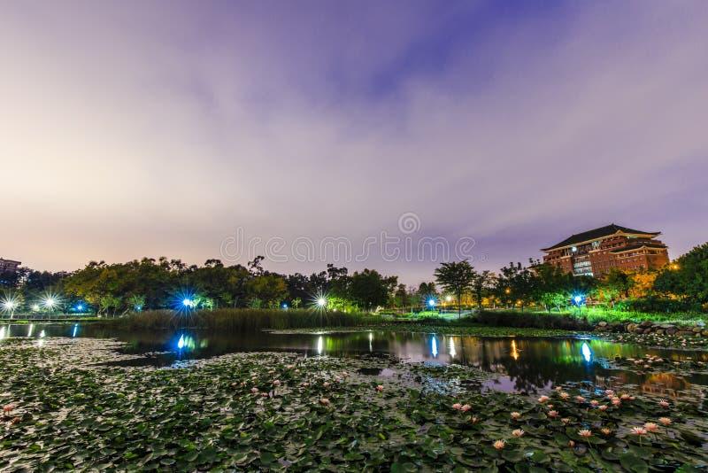 lotusbloemvijver bij nacht royalty-vrije stock foto