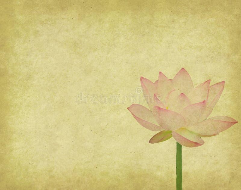 Lotusblomma med den målade seten av abstrakt begrepp royaltyfri illustrationer