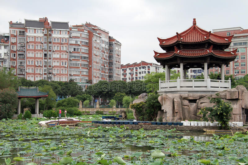 Lotuses in Quanzhou lizenzfreie stockbilder