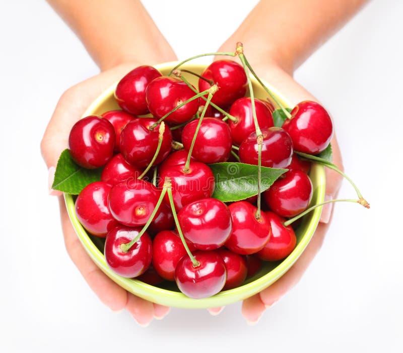 Louça com as cerejas nas mãos da mulher. fotos de stock royalty free
