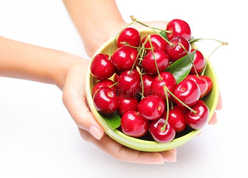 Louça com as cerejas nas mãos da mulher. imagem de stock royalty free