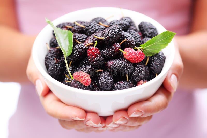 Louça com mulberries. imagens de stock