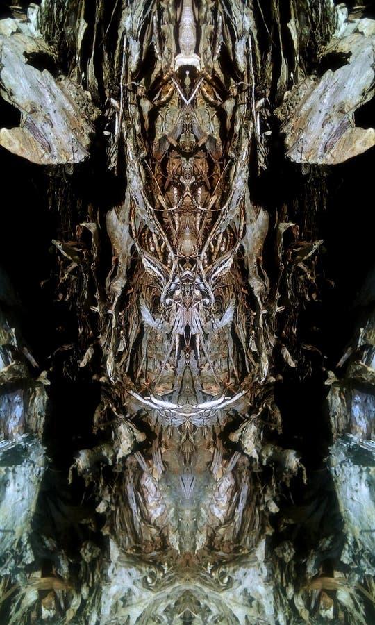 Loucura pantanosa da angra fotografia de stock royalty free