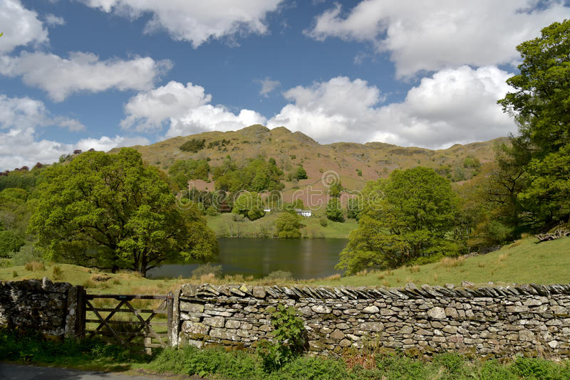 Loughrigg小湖,英国湖地区 库存图片