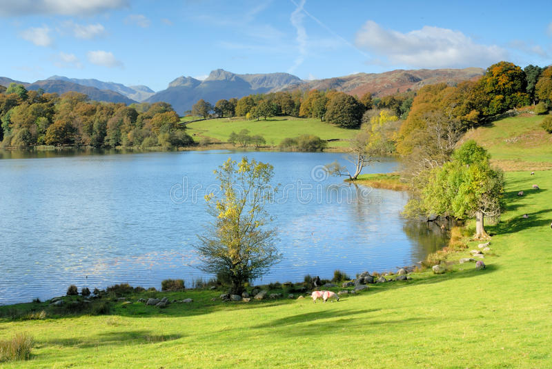 Download Loughrigg Stock Photo - Image: 11432590