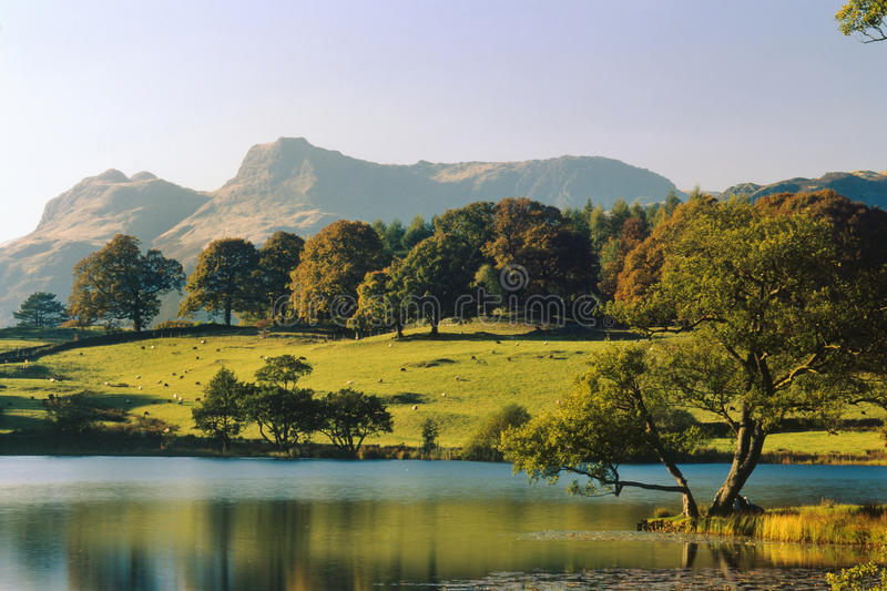 Loughrigg tarn, Cumbria, England. A late evening view of Loughrigg tarn, in the English lake district national park, with the misty Langdale pikes mountains, in royalty free stock photos