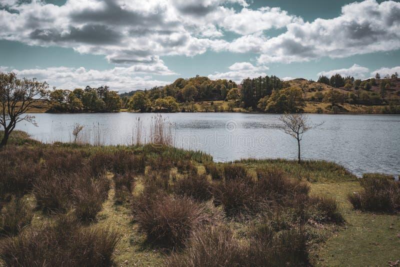 Loughrigg Tarn, Jeziorny okr?g fotografia stock