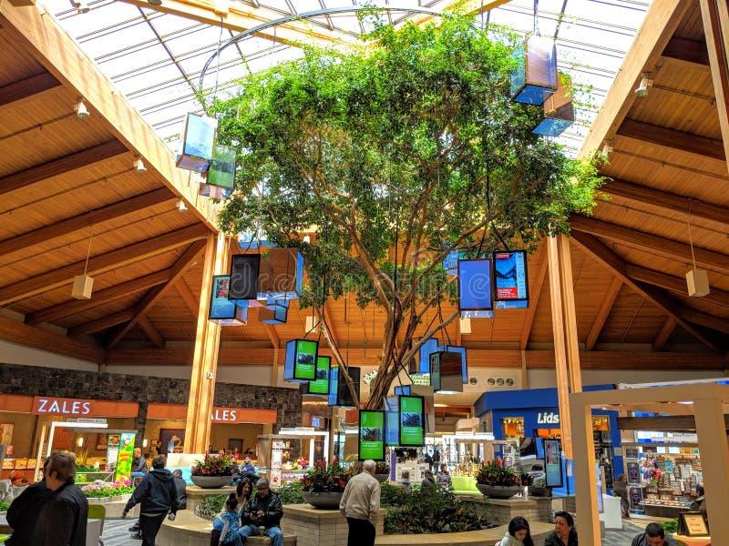 Louis Joliet Mall stockfotos