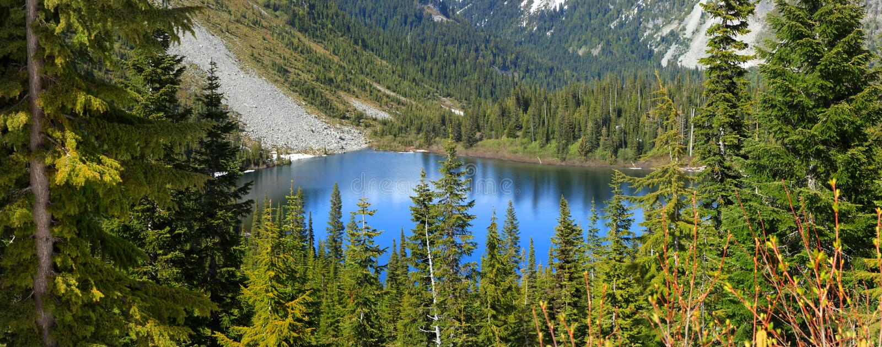 Louise lake. Beautiful Louise lake in Mount Rainier national park royalty free stock photography