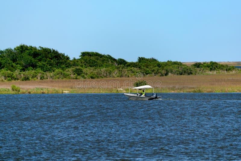 Louisiana Bayou Wetlands royalty free stock image