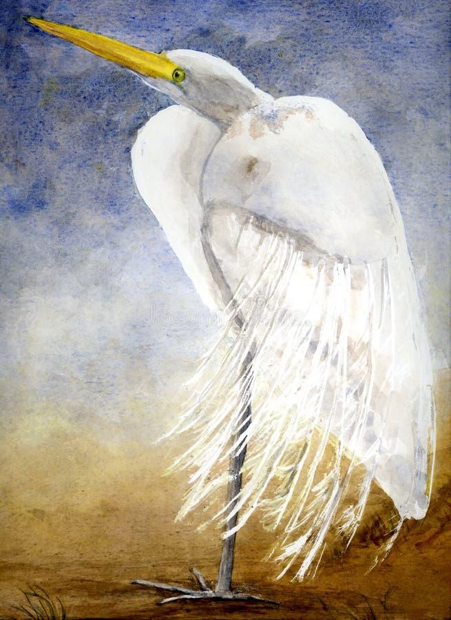 Free Louisiana Egret Stock Photos - 156473