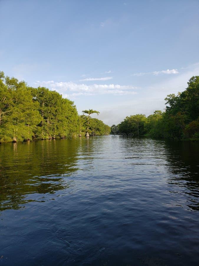 Louisiana flodarmland royaltyfri foto