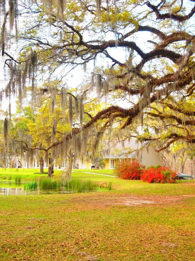 Louisiana-Plantage lizenzfreie stockfotografie