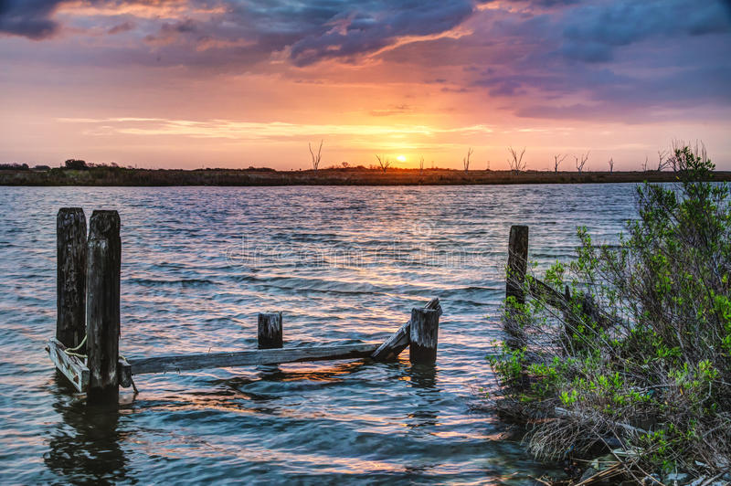 Louisiana soluppgång royaltyfri fotografi
