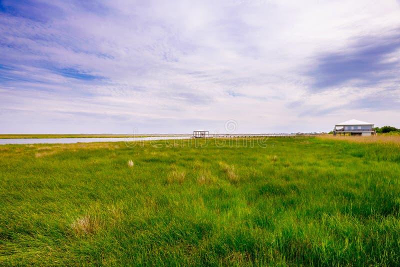 Louisiana-Sumpf lizenzfreie stockfotos